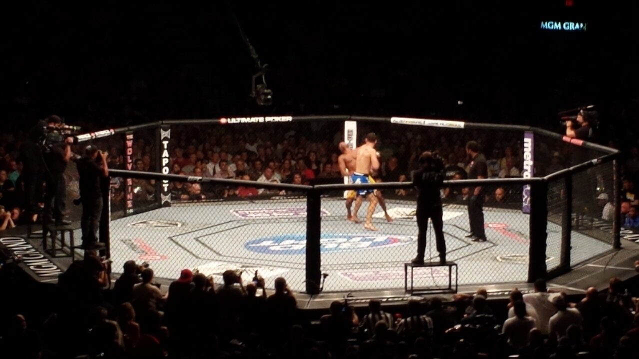 The Rise of The UFC has been a meteoric one ... photo by CC user Kevlar on wikimedia commons (public domain)